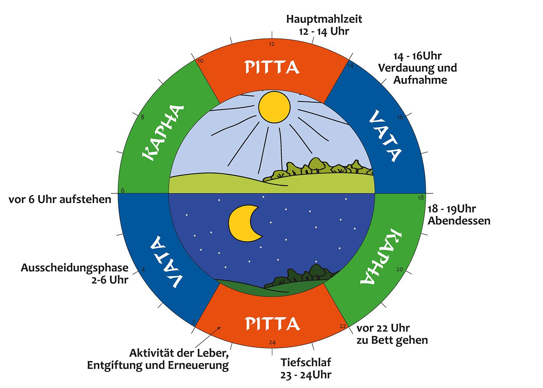 Biologische Uhr - Personal Coaching
