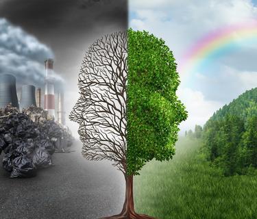 Umweltgift - Ayurveda